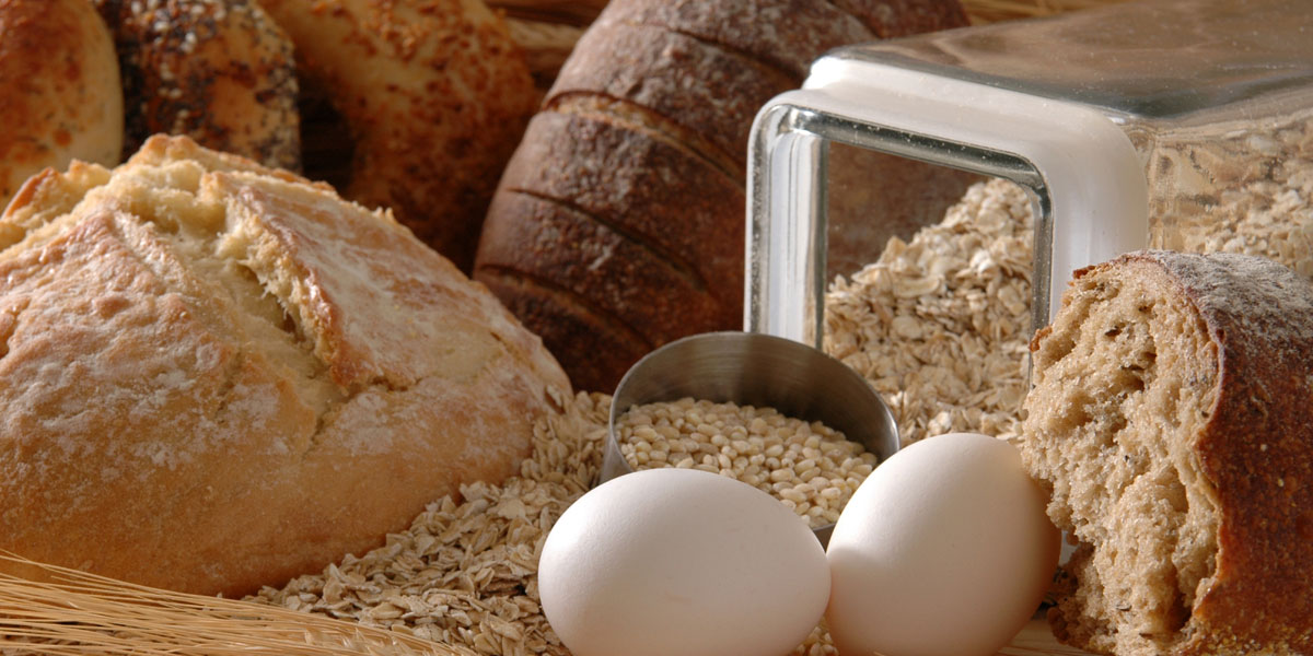 CAREL solution for Production of bread and rusks